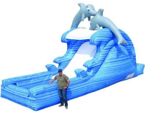 Dolphin Dive Water Slide Rental Denver