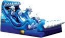 Wave Rider Water Slide Rental Denver